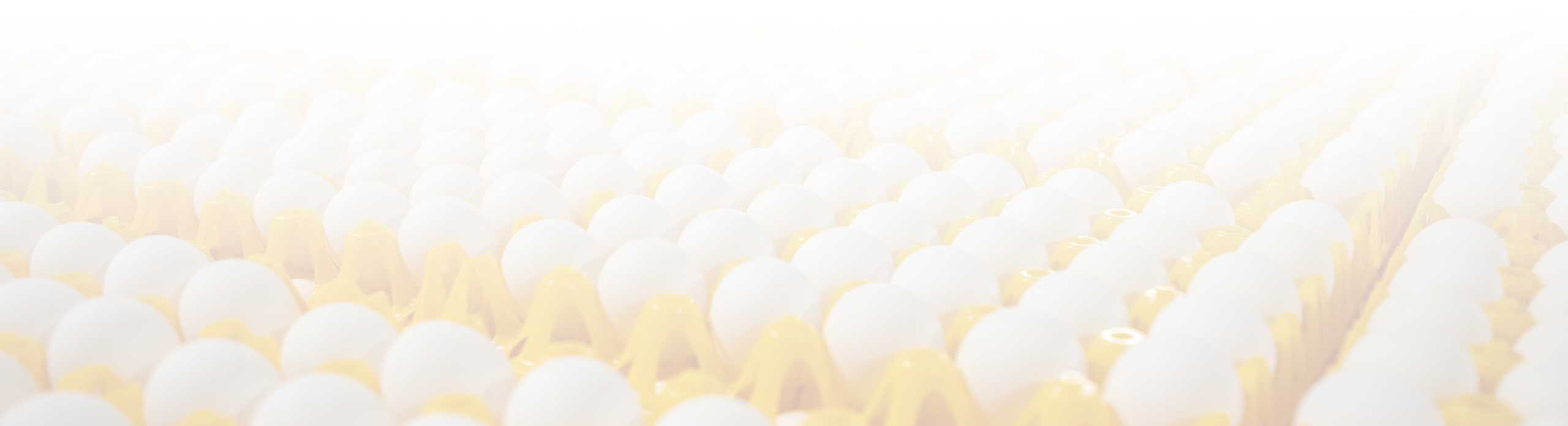 Wabash Valley | Egg Supplier - about copy bg